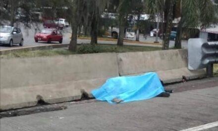 Ejecutan a vendedor de boletosdel A.U en la autopista Córdoba- Orizaba