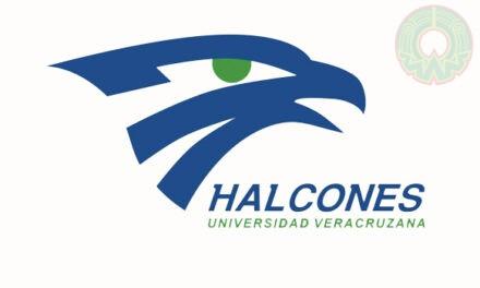 Copa Halcón de Halterofilia Online registró buenas marcas