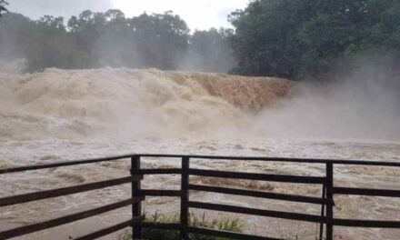 Video: Se desborda el río de las Cascadas de Agua Azul en Chiapas