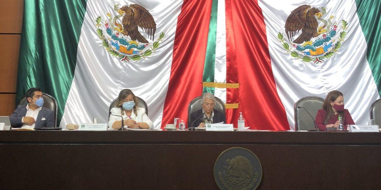 Sánchez Cordero comparece ante comisiones en la Cámara deDiputados https