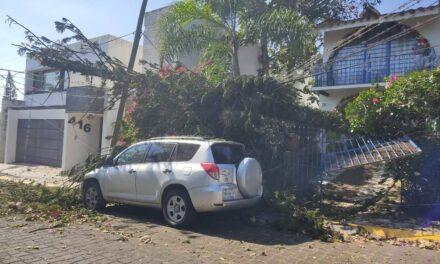 Atiende protección civil de Xalapa emergencias por frente frío