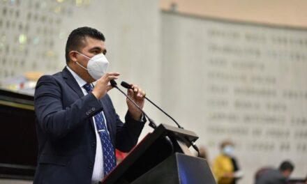 Propone diputado Nahúm Álvarez iniciativa que apoyaría producción del chayote