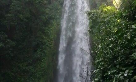 Fallecen 4 excursionistas en San Andrés Tuxtla