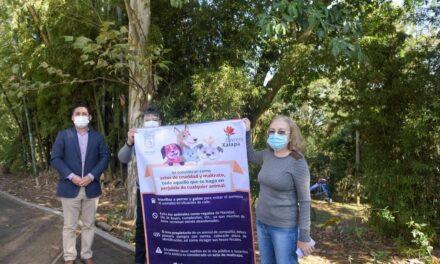 Ayuntamiento de Xalapa exhorta a propietarios de animales a ser responsables