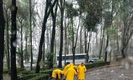 Personal operativo de CMAS Xalapa, trabaja en afectaciones por la lluvia de este miércoles