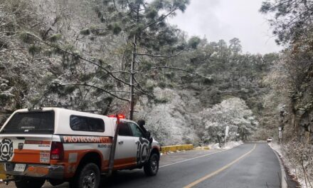 Video:En Nuevo León se registró la primera nevada en las zonas montañosas