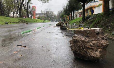 Colocan piedras en la avenida Ruiz Cortines para que los automóvilistas respeten los espacios para la ciclovía