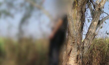 Un joven se quita la vida colgándose de un árbol en una comunidad de Carrillo Puerto