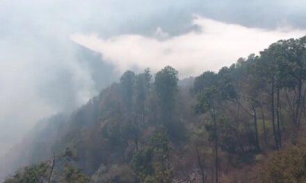 Se incendian cerca de 130 hectáreas de bosquesen Tatatila