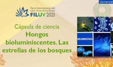 FILU Virtual presenta actividades literarias, artísticas y culturales