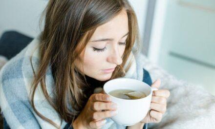 Estas plantas medicinales te pueden servir para calmar el estrés en aislamiento