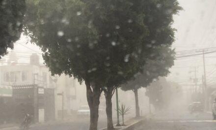 Las impactantes imágenes de una tormenta de polvo que derribó árboles y postes de luz en el Valle de México