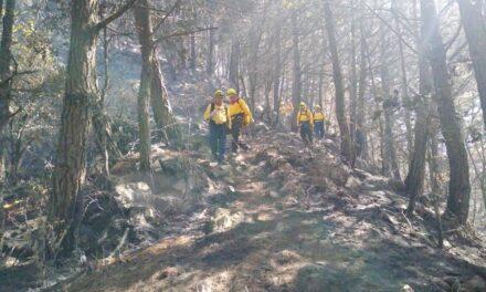 El Incendio Forestal en el municipio de Tatatila, se encuentra 100% liquidado.