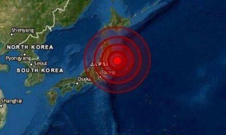 Japón: se levantó el alerta de tsunami tras el fuerte sismo de 7,2