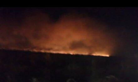 Video: Se registra incendio sobre la carretera Coatzacoalcos-Minatitlán
