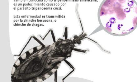 14 de abril, conmemoración del Día Mundial de la enfermedad de Chagas