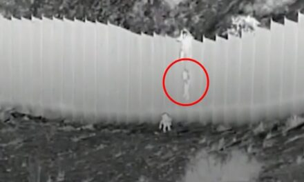 """Las dos niñas lanzadas desde una valla fronteriza por dos """"coyotes"""" están sanas y salvas"""