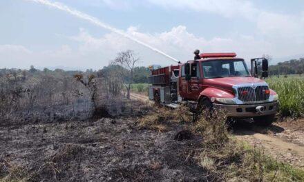 Se registra incendio de pastizal en Coatepec