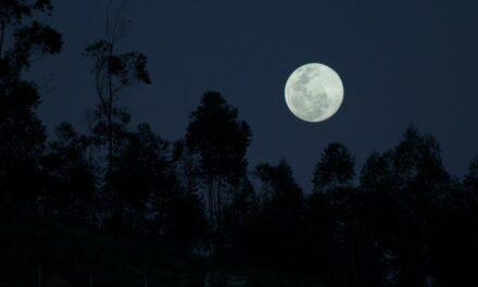 Te decimos cuándo y cómo ver la Superluna Rosa Se trata de uno de los fenómenos astronómicos más importantes del año