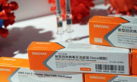 OMS fija fechas para revisión de vacunas de Sinopharm y Sinovac