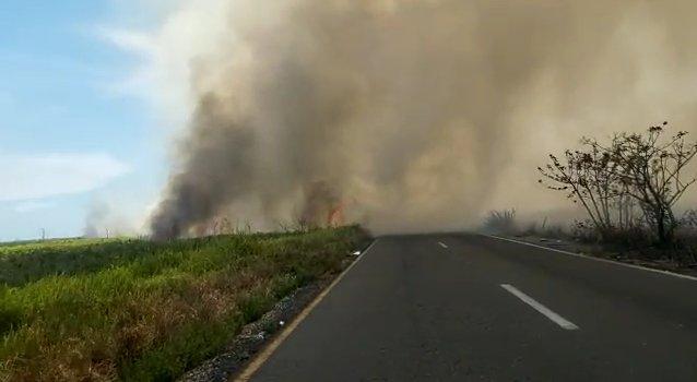 Se registra otro incendio de pastizal en la carretera federal Coatzacoalcos – Minatitlán.