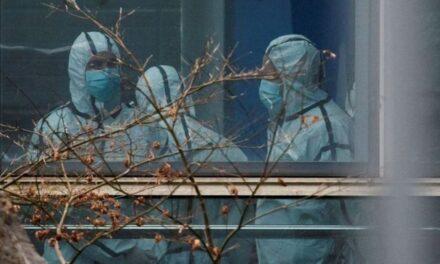 Casos globales de Covid descendieron 15% en la última semana