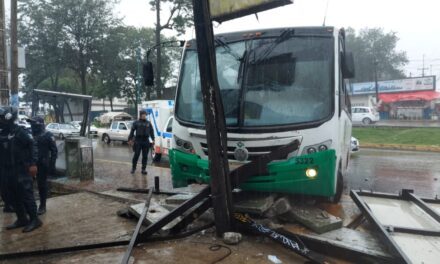 Camión de TRS se lleva la parada de autobús en Xalapa; varios heridos