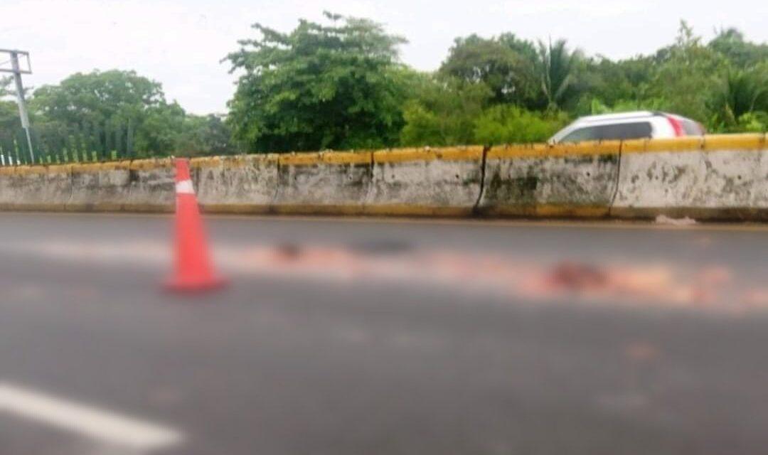 Pepenador muere atropellado en la autopista Cosoleacaque-Nuevo Teapa