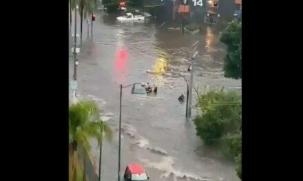 Video: Así rescataron a una familia atrapada en su auto durante inundación por lluvias en Jalisco