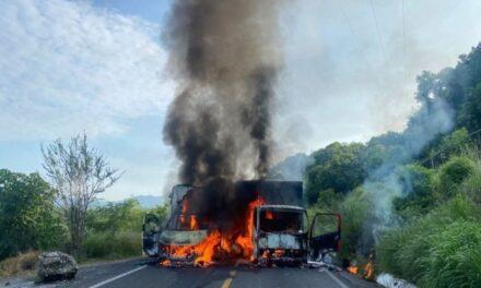Autodefensas de Michoacán rescatan a 'El Kiro', líder desaparecido desde el domingo