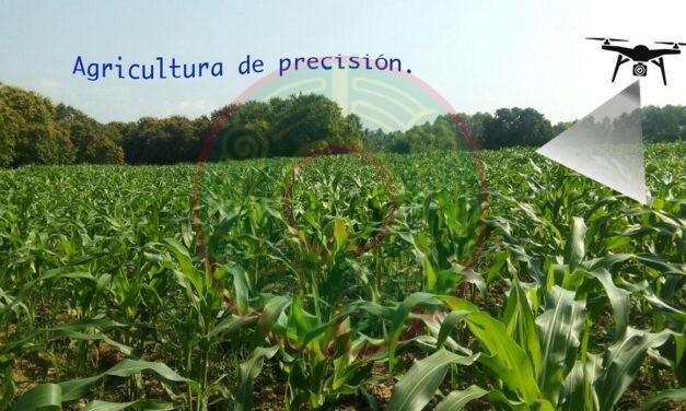 AGRICULTURA DE PRECISIÓN, ANÁLISIS DE IMÁGENES APLICADA A LA PRODUCCIÓN AGRÍCOLA.