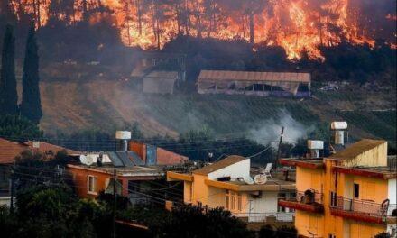 Videos: Incendio forestal estalla en suroeste de Turquía
