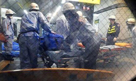 Al menos nueve heridos por ataque con cuchillo en un tren de Tokio