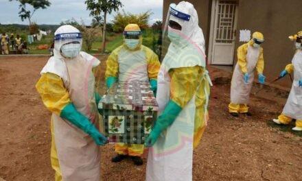Surge el primer caso grave de virus de Marburgo, de murciélago a humano
