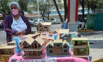 Abuelita crea casas de cartón y las intercambia por despensa; usuarios en redes piden ayudarla