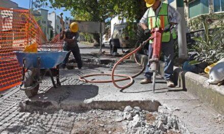 15 días permanecerá cerrada la vialidad en la avenida Araucarias, entre las calles Chopin y avenida de Los Fresnos