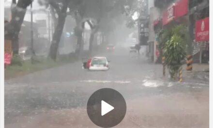 Video: No hay paso en la avenida Araucarias, Xalapa