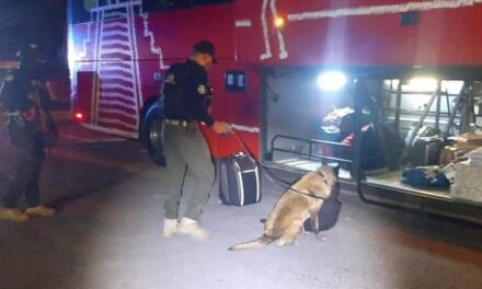 Detiene SSP a dos por presuntos delitos contra la salud, en Orizaba y Puente Nacional